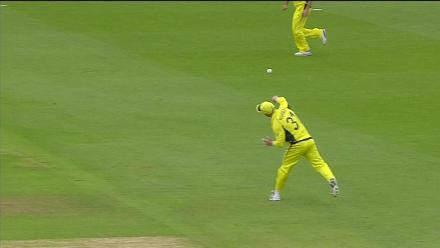 Warner's brilliance on the field