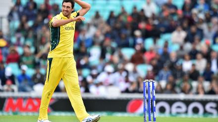 Alyssa Healy might discuss what to expect at the Women's World Cup from her husband, Australian fast bowler Mitchell Starc
