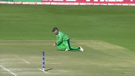Watch: Shenwari's dismissal gives Ireland a glimmer