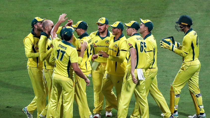 Australia's squad have the least ODI wickets among the ten teams