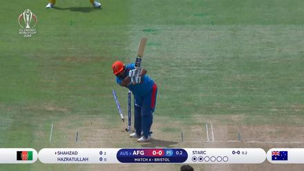 CWC19: AFG v AUS -  all ten Afghanistan wickets