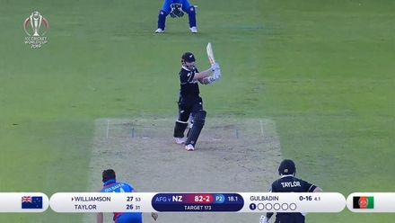 Williamson swats Gulbadin for four