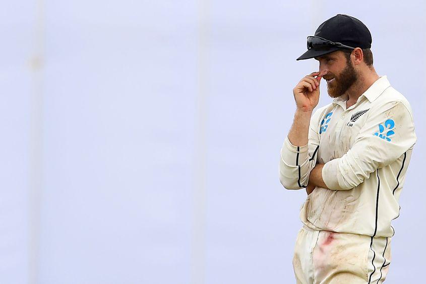 Kane Williamson praised his bowlers' efforts