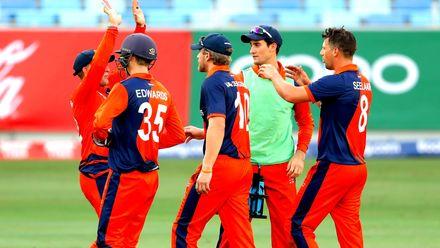 Netherlands celebrate a wicket
