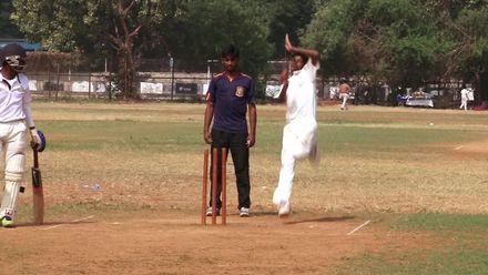 Cricket por toda a parte