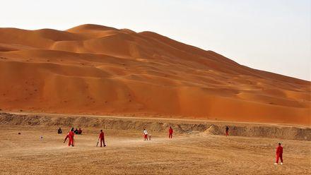 Desert cricket! Location: Saudi Arabia ( Rub'al Khali Desert). Photo credit: Usman Ali