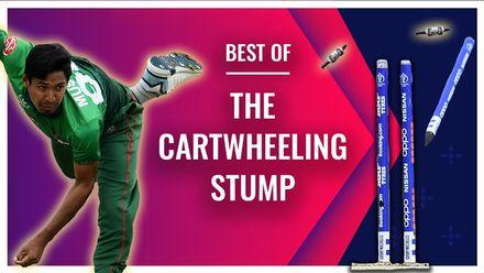 The sweet music of cartwheeling stumps | Bowlers Month