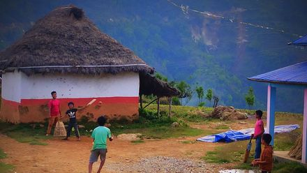 A fine view at fine leg! Location: Syangja, Nepal. Photo credit: Bishwas Bhattarai