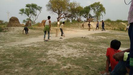 A field day! Location: Kanaura, Uttar Pradesh, India. Photo credit: Atul Prajapati